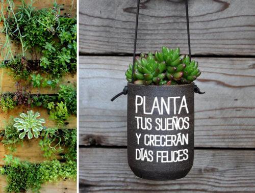 Macetas creativas plantas reciclados megapost taringa for Fotos de plantas en macetas